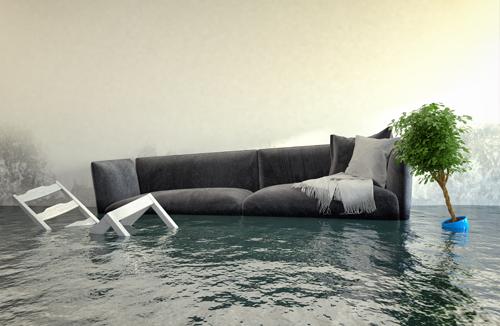 Water & Flood Damage