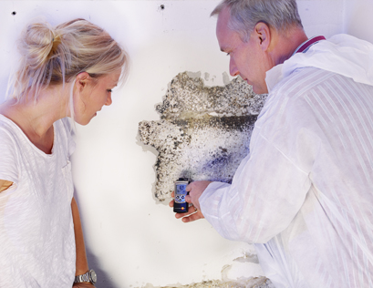 Mould Removal and Mould Remediation